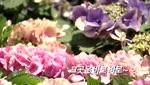 [예고편] 2018 U+골프 GTOUR 4차 / 롯데렌터카 WGTOUR 4차